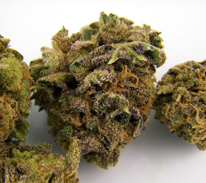 Grand Daddy Purple X Sour Diesel Marijuana Strains